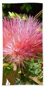 Australia - Red Caliandra Flower Bath Towel