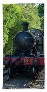 5542 On The The Points Bath Towel