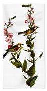 Audubon: Warbler Bath Towel