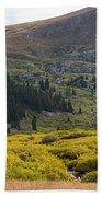 Mount Bierstadt In The Arapahoe National Forest Bath Towel