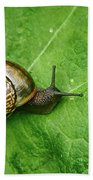 Copse Snail Bath Towel