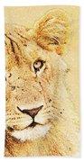 lioness Masai Mara, Kenya Bath Towel