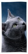 Russian Blue Cat Bath Towel