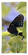 7759 - Butterfly Bath Towel