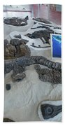 Centro De Investigaciones Paleontologicas Bath Towel
