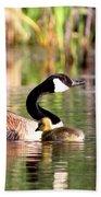 8137 - Canada Goose Bath Towel