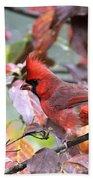 8627-001 - Northern Cardinal Bath Towel