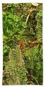 Mosses And Liverworts 8861 Bath Towel