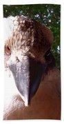 Australia - Kookaburra I'm Looking At You Bath Towel