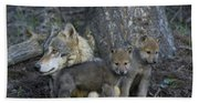Gray Wolf And Cubs Bath Towel