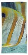 Malaysia Marine Life Bath Towel