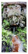 Public Fountain In Palma Majorca Spain Bath Towel