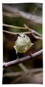 9343-00-ruby-crowned Kinglet Bath Towel
