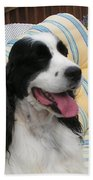 #940 D1066 Farmer Browns Springer Spaniel Happy Bath Towel