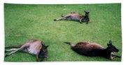 Australian Native Animals Bath Towel