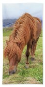 A Beautiful Red Mane On An Icelandic Horse Bath Towel