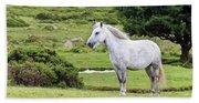 A Beautiful White Dartmoor Pony, Devon, England Hand Towel