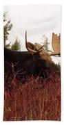 A Big Fierce-eyed Bull Moose Bath Towel