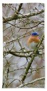 A Bluebird  Bath Towel