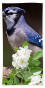 A Bluejay Bouquet Bath Towel