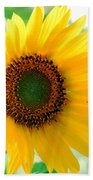 A Bright Yellow Sunflower Hand Towel