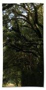 A Canopy Of Trees Bath Towel