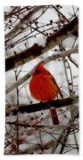 A Cardinal In Winter Bath Towel