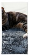 A Cat From Rome Bath Towel