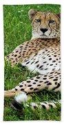 A Cheetah Resting On The Grass Bath Towel