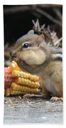 A Delicious Treat - Chipmunk Eating Corn Bath Towel
