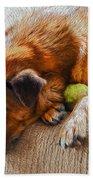A Dog And His Tennis Ball Bath Towel