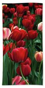 A Field Of Tulips Bath Towel