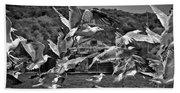 A Flock Of Seagulls Flying High To Summer Sky Bath Towel
