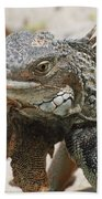 A Gray Iguana With Spines Along It's Back Bath Towel