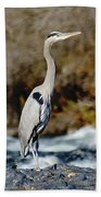 A Great Blue Heron At The Spokane River 2 Bath Towel