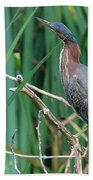 A Green Heron By The Canal Hand Towel