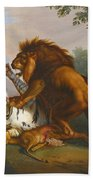 A Lion And Tiger In Combat Bath Towel
