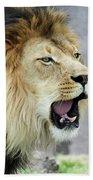 A Male Lion, Panthera Leo, Roaring Loudly Bath Towel