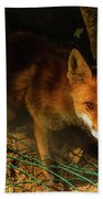 A Nocturne  Meeting With A Fox In The Woodland Bath Towel