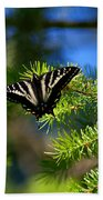 A Pale Swallowtail Bath Towel