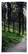 A Path Through A Dense Forest Bath Towel