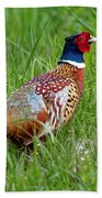 A Ring-necked Pheasant Walking In Tall Grass Bath Towel