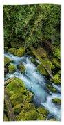 A River's Path Bath Towel