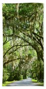 A Road To The Inside Just Outside Of Savannah Bath Towel