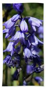 Single Bluebell Hand Towel