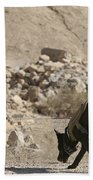 A Soldier And His Dog Search An Area Bath Towel