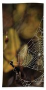 A Spiders Creation Hand Towel