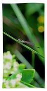 A Summer Of Dragonfly Kisses Bath Towel