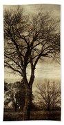A Tree Along The Roadside Hand Towel