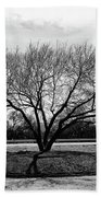 A Tree In Fort Worth Bath Towel